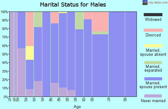 Zip code 34987 marital status for males