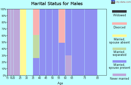 Zip code 35035 marital status for males