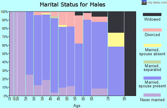 Zip code 35080 marital status for males