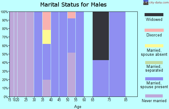Zip code 35587 marital status for males