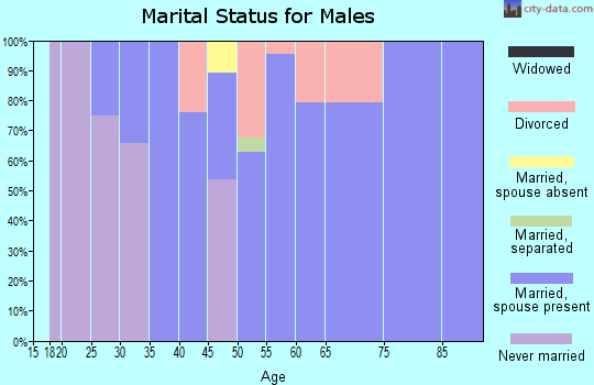 Zip code 35741 marital status for males