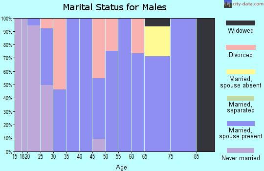 Zip code 35966 marital status for males