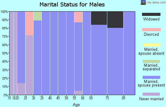 Zip code 36006 marital status for males