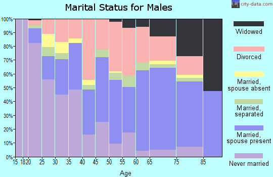 Zip code 36201 marital status for males