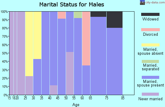 Zip code 36783 marital status for males