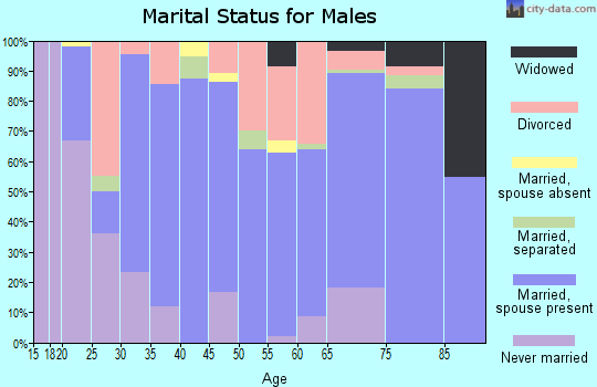 Zip code 37101 marital status for males