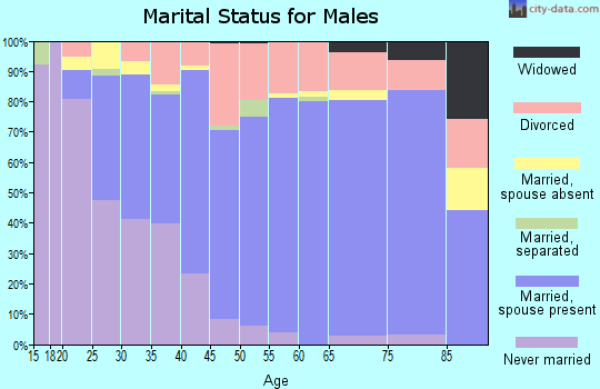 Zip code 37138 marital status for males