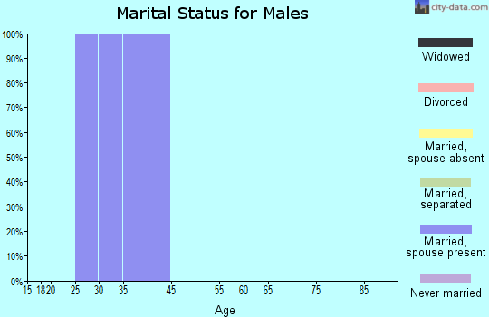 Zip code 37152 marital status for males