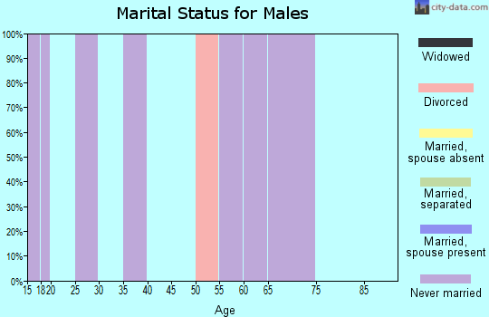 Zip code 37213 marital status for males