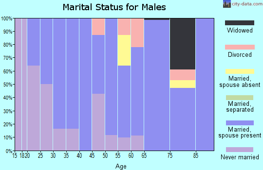 Zip code 37313 marital status for males