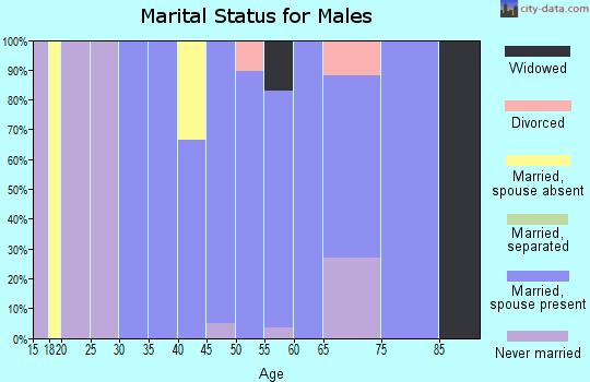 Zip code 37325 marital status for males