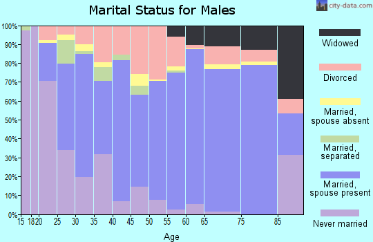 Zip code 37355 marital status for males