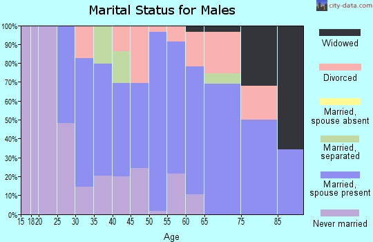 Zip code 37419 marital status for males
