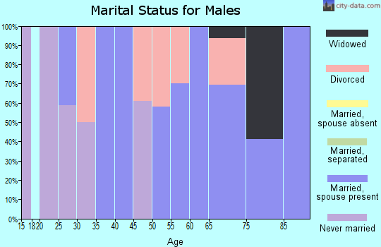 Zip code 37866 marital status for males
