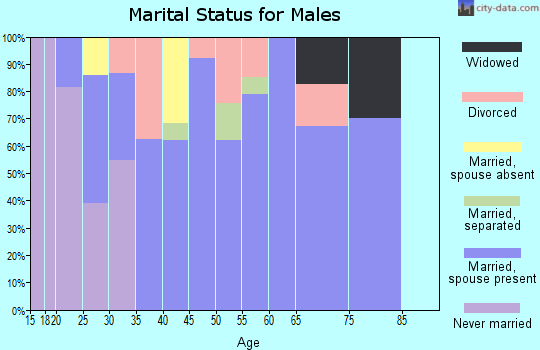 Zip code 37888 marital status for males