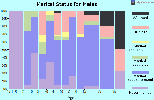 Zip code 38080 marital status for males