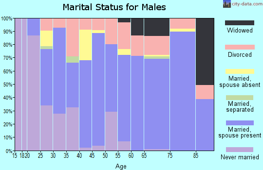 Zip code 38201 marital status for males