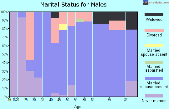 Zip code 38233 marital status for males