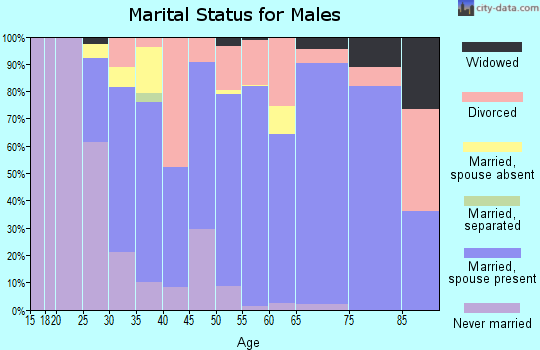 Zip code 38344 marital status for males