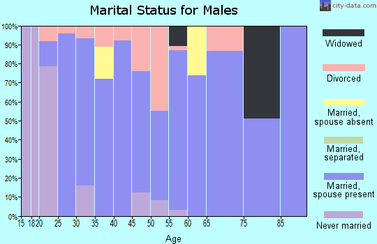 Zip code 38355 marital status for males