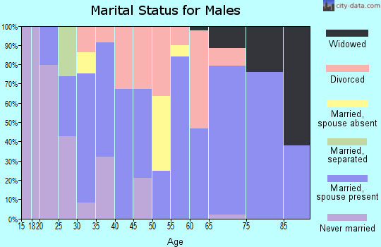 Zip code 38357 marital status for males