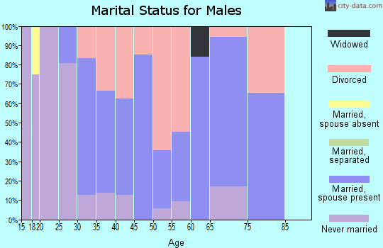 Zip code 38473 marital status for males