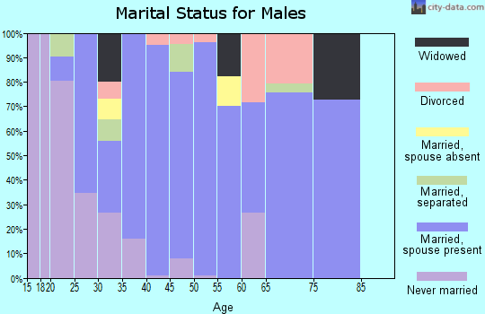 Zip code 38483 marital status for males