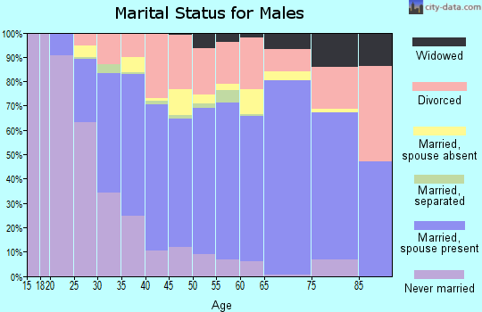 Zip code 38501 marital status for males