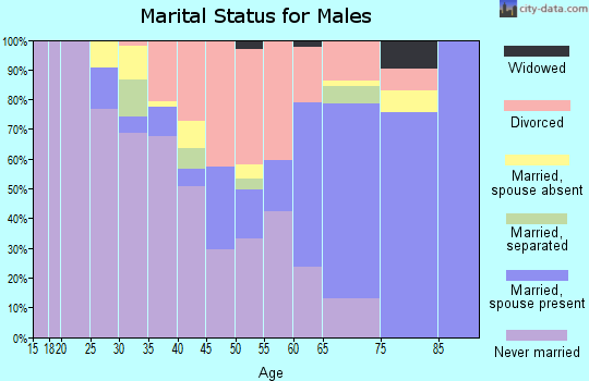 Zip code 38737 marital status for males