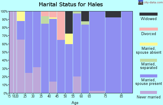 Zip code 38870 marital status for males