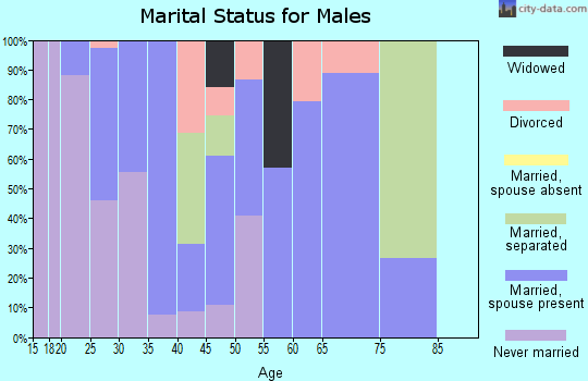 Zip code 38871 marital status for males