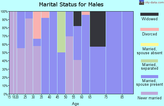 Zip code 38952 marital status for males