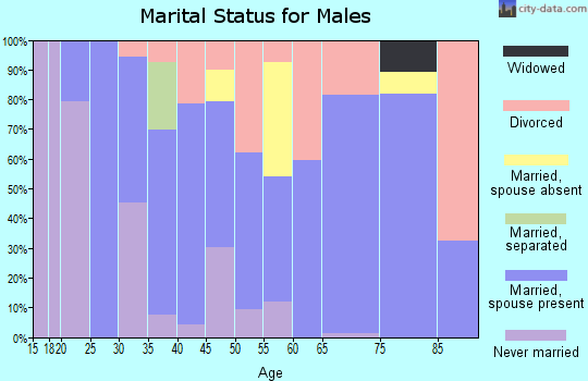 Zip code 38967 marital status for males