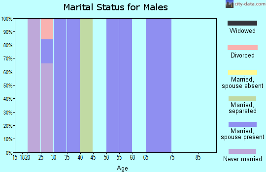 Zip code 40140 marital status for males
