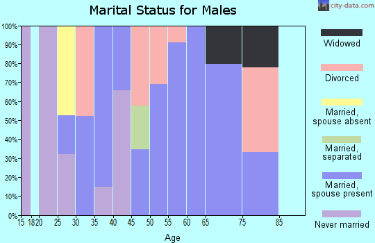 Zip code 40142 marital status for males