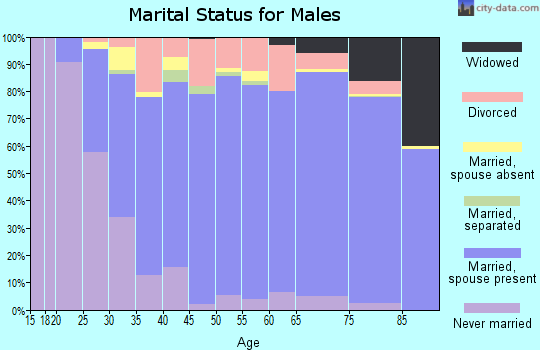 Zip code 40241 marital status for males