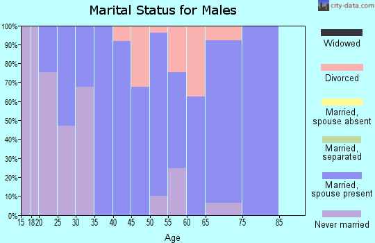Zip code 40372 marital status for males