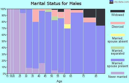 Zip code 40513 marital status for males
