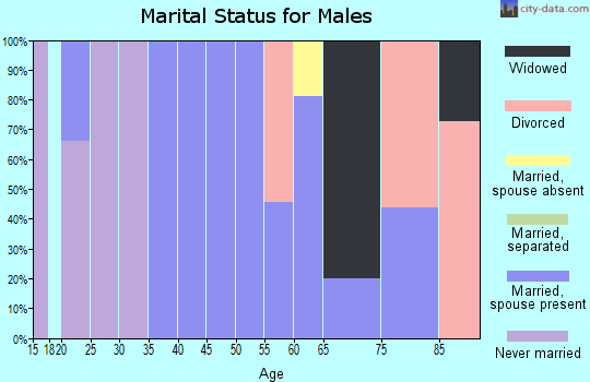 Zip code 40813 marital status for males