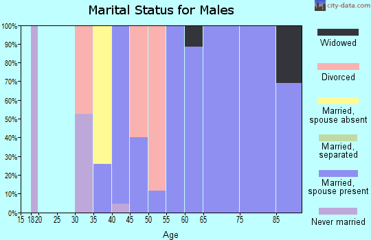Zip code 40862 marital status for males