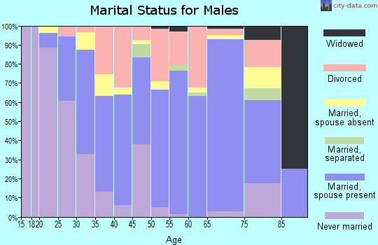 Zip code 40965 marital status for males