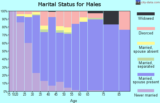 Zip code 41005 marital status for males