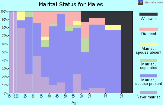 Zip code 41041 marital status for males