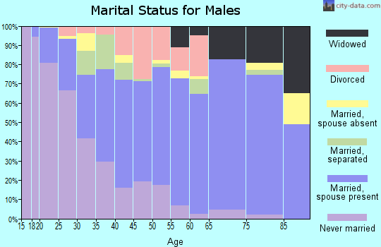 Zip code 41056 marital status for males