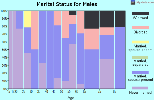Zip code 41064 marital status for males