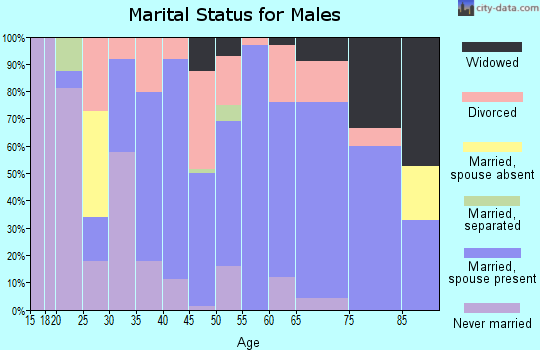 Zip code 41139 marital status for males