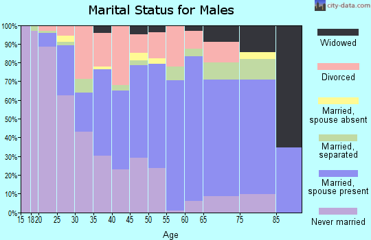 Zip code 41339 marital status for males