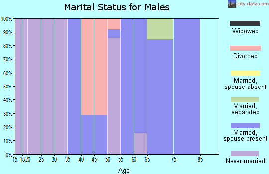 Zip code 41804 marital status for males