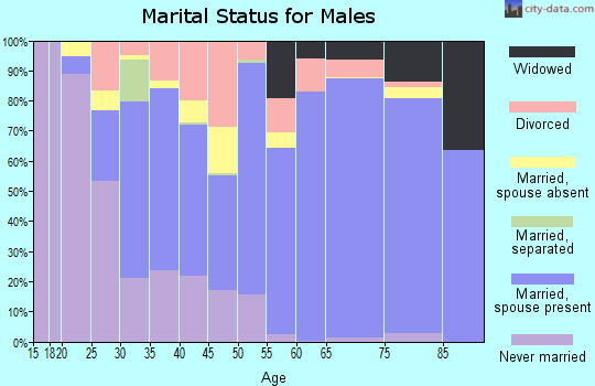 Zip code 42025 marital status for males