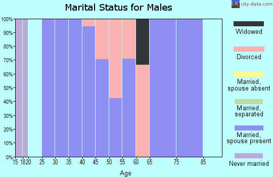 Zip code 42054 marital status for males